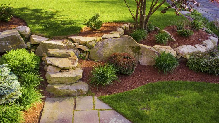 Landscaping and More for Your Use