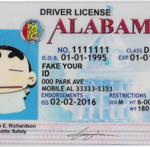 Try to evade the use of fake id